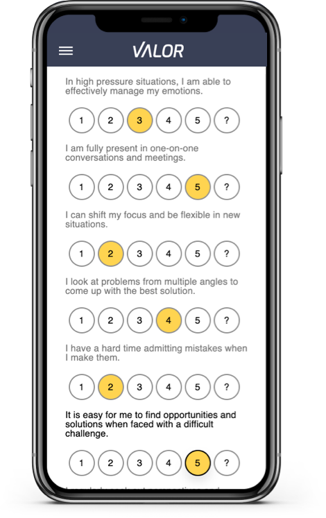 Assessments - Mobile